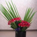 シンプルな赤バラのディスプレイ